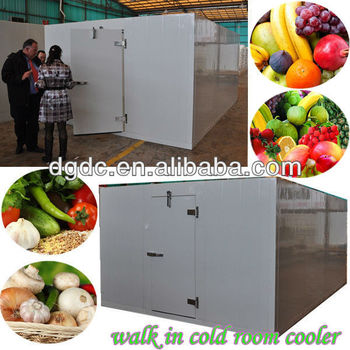 walk in cold room cooler (fruit & vegetable)