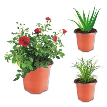 NEW planters nursery pot seeding pots flower pot for greenhouse