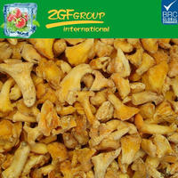 frozen chanterelles best price