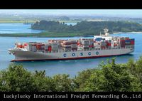 Best Sea freight forwarder shipping rate China to Albania Valona
