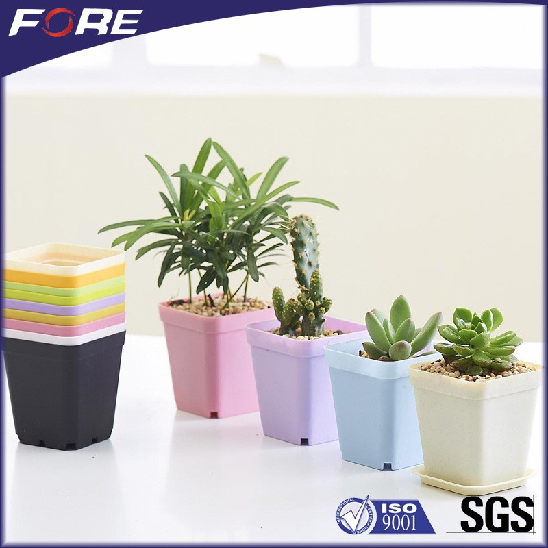 Single and Cell Seeding Nursery Planting Container