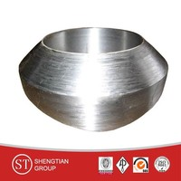 astm a 182 f5 class 3000 forged fittings
