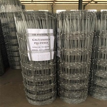 high quality factory direct sale field fence for deer