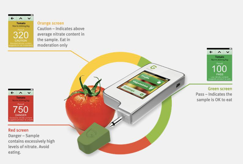 Portable high resolution Greentest LCD display Nitrate radiation vegetables meat fruit testing instrument
