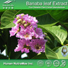 Hot sale Plant extract Banaba leaf extract/Banaba leaf powder/Banaba powder extract