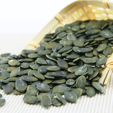 wholesale fresh pumpkin seeds GWS ton price