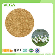 Natural Digestive Support Formula Personalized Adjust Intestines Lysine HCl For Poultry Feed