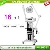 10 in 1 salon facial machine