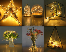 Christmas Indoor Outdoor Decoration Led Copper Wire String Lights/sliver plated copper wire