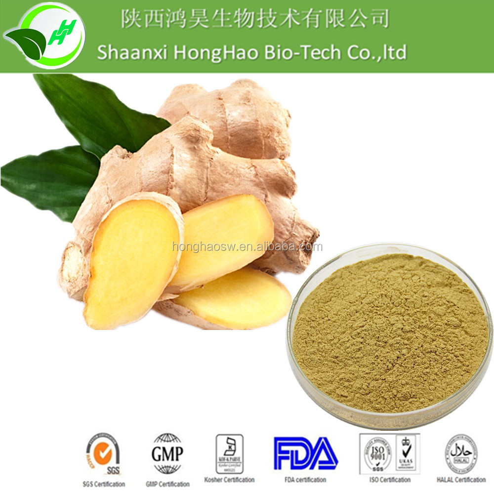 100% Nature Pure Ginger Extract 5% gingerol With Low Price