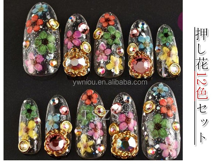Beautiful Flower Designs Many Color Dried Flower Nail Art Accessories