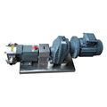 Zhejiang L And B Stainless Steel Transfeer Pump Rotor Pump