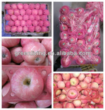 cheapest delicous fuji apple in China/factory direct supplier
