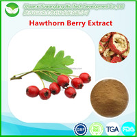 Healthy plant food hawthorn berry powder P.E