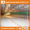 Alibaba Heracles design Complete poultry equipment for broiler and breeders