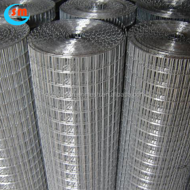 Wholesale Price Free Sample Galvanized Welded Wire Mesh Price
