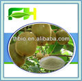 100% Natural Actinidia chinensis Extract/Kiwifruit Extract
