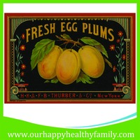 Custom egg plums Printed Rubber Kitchen Floor Mat Door Mat