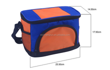 trendy portable food delivery cooler bag