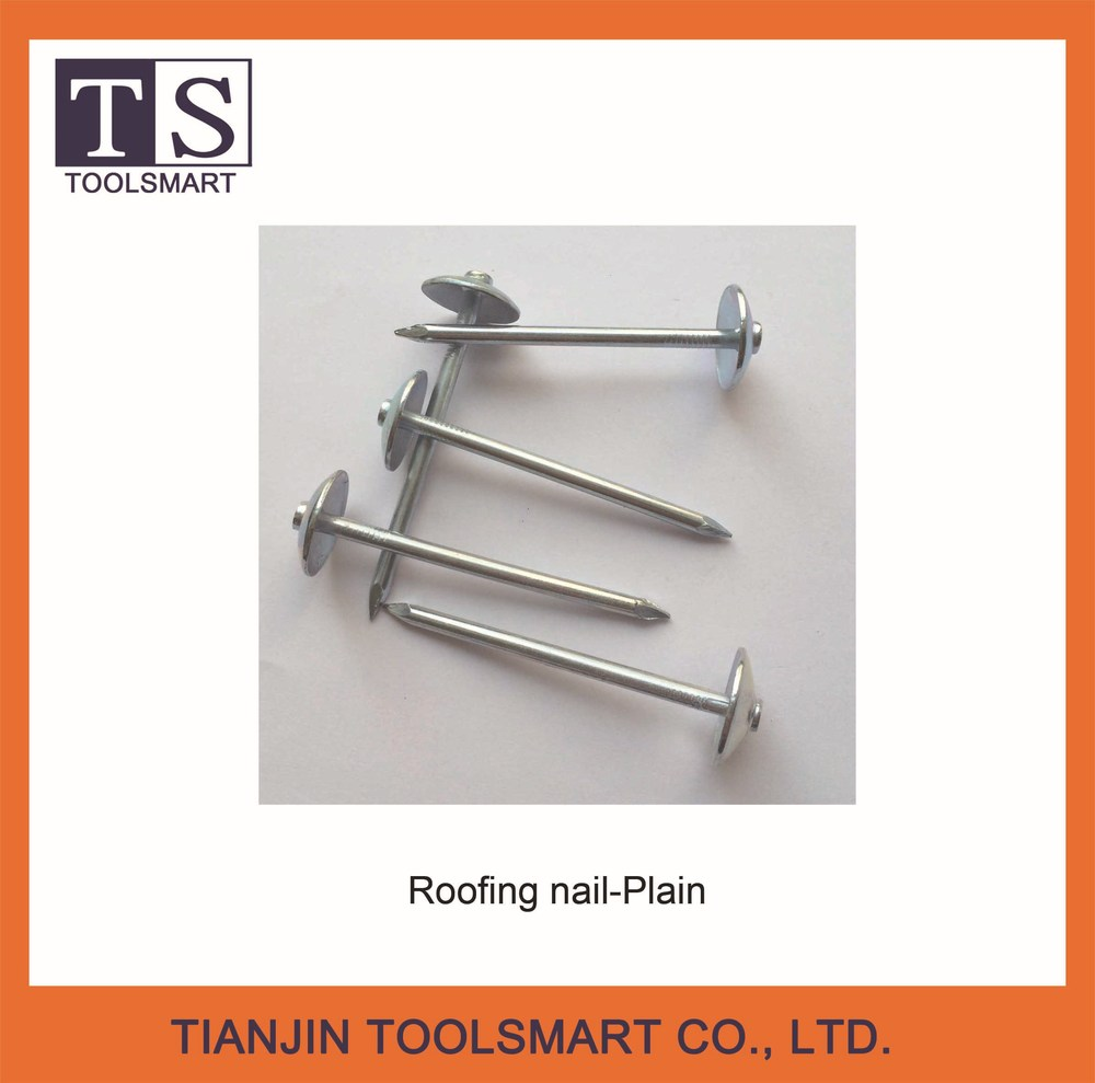 roofing nail for building construction