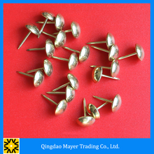 Qingdao High Quality Decorative Chair Nails