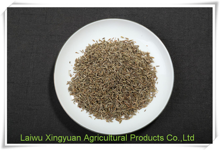 Natural organic herbs seed cumin for sale