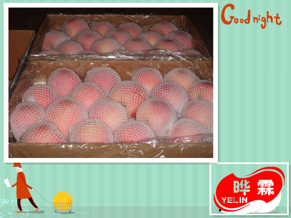Fuji fresh apple from Shandong Province