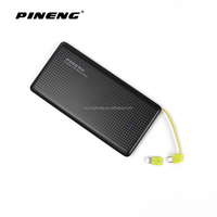 Pineng 10000mAh Dual USB Port Power