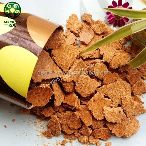 Animal Feed Soy Bean Extract