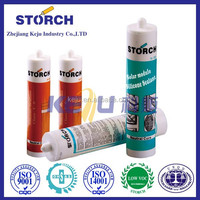 Storch dow corning neutral plus silicone sealant