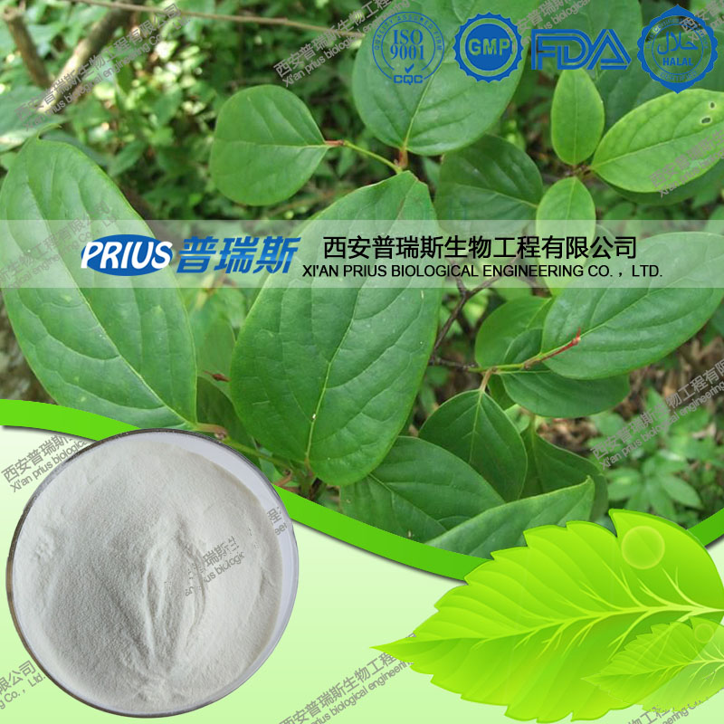 Caulis Sinomenii Extract Sinomenine Hydrochloride
