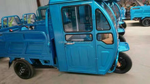 Enclosed Electric Wagon WITH Top Lights and warmer/fan