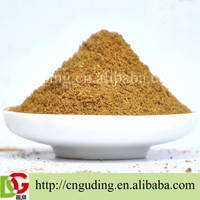 Barbecue condiments seasoning powder with good flavor