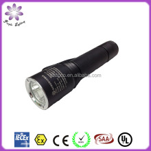 Rechargable Explosion Proof LED Torch IP65