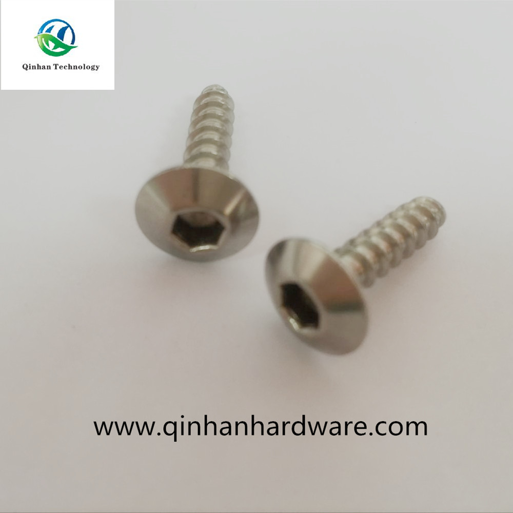 Various and Best M5 Galvanized Truss Head Screw Inox Material