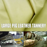 EUROPE Pig Grain Leather Glove Pig