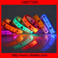 My Pet Newly design Blue Little purple led pet collar for dogs