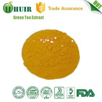china supplier GMP factory Total Tea Polyphenols 50% UV 100% antural green tea extract
