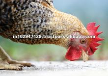 Feed mix for poultry