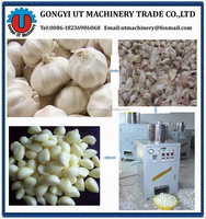 New design Garlic peeling washing machine / garlic peeler // wechat:008613939051804