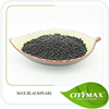 Hot!!! Slow Release type black pearl Humic Acid for soil conditioner