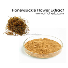 GMP Manufacture natural honeysuckle flower powder price