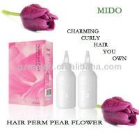 Acid lonic professional hair perm solution and hair perm lotion
