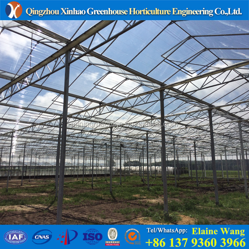 amazing cost competitive specialized used greenhouse equipment for sale