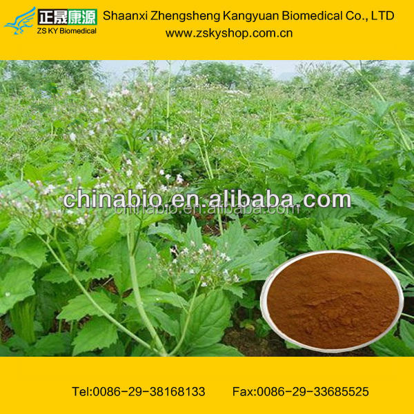 Valerian Root Powder Extract from GMP Certified Factory