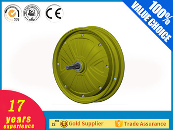 DM-210 high torque low rpm electric motor