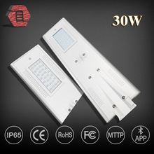 30W top quality hot sale integrated all in one solar led street light solar cattail bulrush garden lights LYBRAIO30WA114