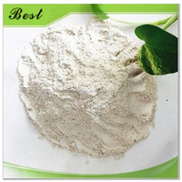 Environment Friendly Bentonite Bleaching Earth