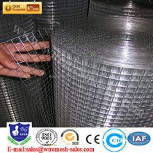 galvanized bird cage/ Welded Wire Mesh Panel/galvanized wire mesh