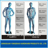 International fashion mannequin!!adult male dolls